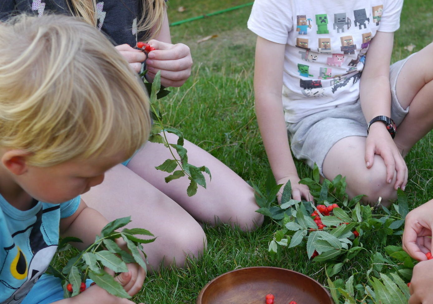 4 children of different ages sitting on grass picking red berries off leafy twigs and putting them in a wooden bowl