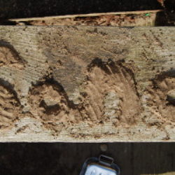 sand writing piles