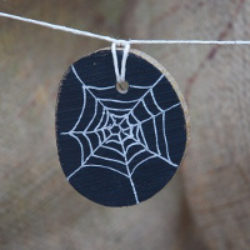 spiders web disc