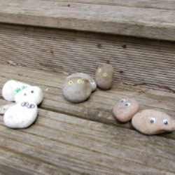 pebble creatures sorted into colour piles