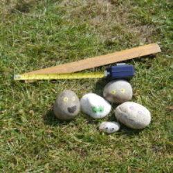 measuring pebbles