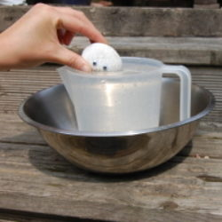 dropping a pebble creature into a jug of water to demonstrate displacement