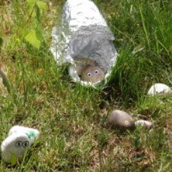 pebble aliens landed