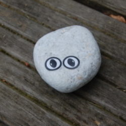 sticker eyes pebble