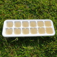 elderflower cordial in ice cube trays