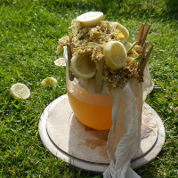 pile of sliced lemon and elderflower heads resting on muslin cloth over plastic jug