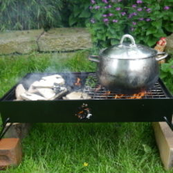 double firebox with pan on right side grill
