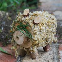 wood hog covered in dandelion petals