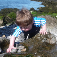 child looking at pebbles in rockpool