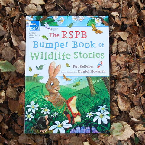 RSPB Bumper Book of Wildlife Stories