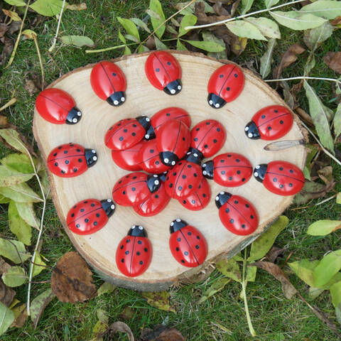 Ladybird Counting Set