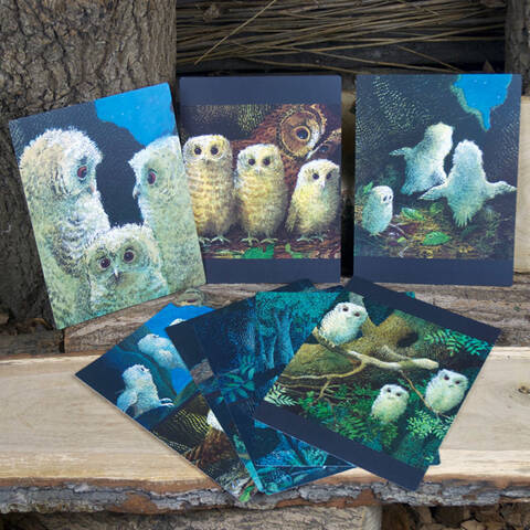 Owl Babies Sequencing Cards