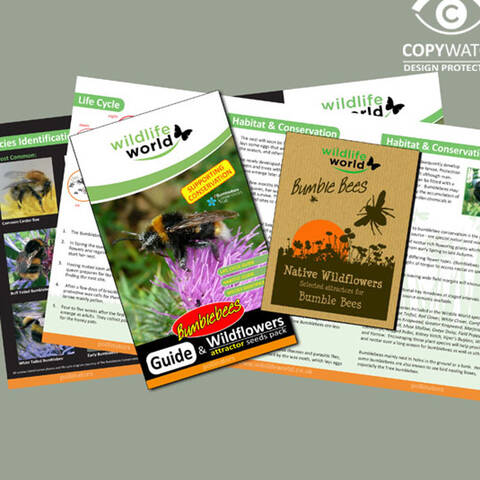 Bumblebee Wild Flower Attractor Seed Pack and Guide