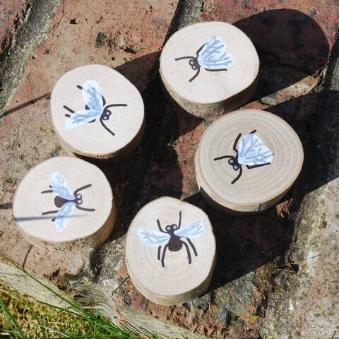 Hand painted Flies - Set of 5