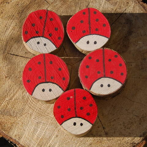 Hand painted Ladybirds - Set of 5