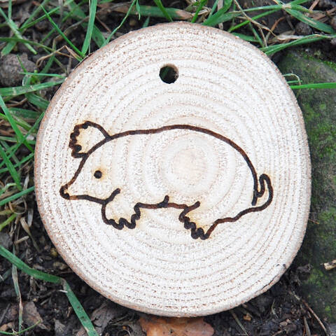 Trail Disc - Wildlife - Mole