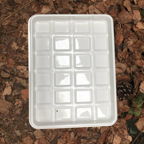White Tray with Compartments