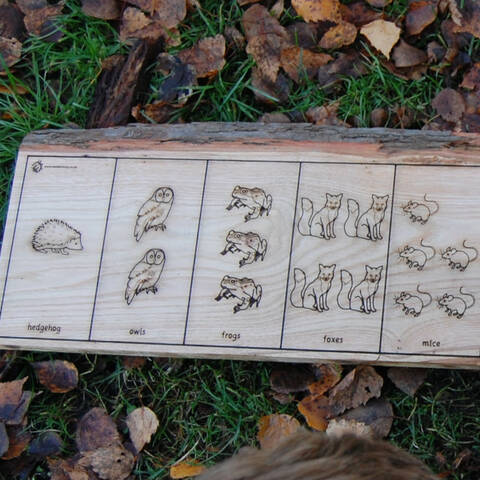 Woodland Animals Counting Planks